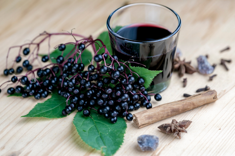 Elderberry Immune Tonic Recipe Syrup Cold and Flu Herbal Remedy