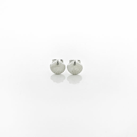 Petite Scallop Shell Stud Earrings