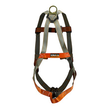Load image into Gallery viewer, VERTIGO 3 PT FULL BODY HARNESS