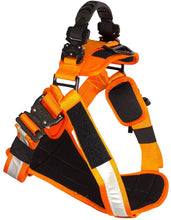 Load image into Gallery viewer, Fusion Pets Trekker Hi-Vis Ergonomic Reflective Strip Dog Harness