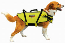 Load image into Gallery viewer, Fusion Pets Aqua Sport Recreational Flotation Dog Harness