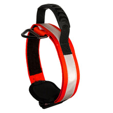 Load image into Gallery viewer, Fusion Pets Trekker Hi-Vis Reflective Dog Collar