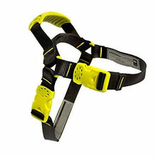 Load image into Gallery viewer, Fusion Pets Universal Tempo Dog Harness
