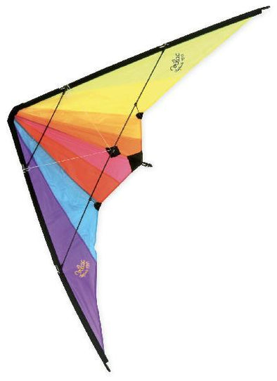 Delta Kite With Double Handle