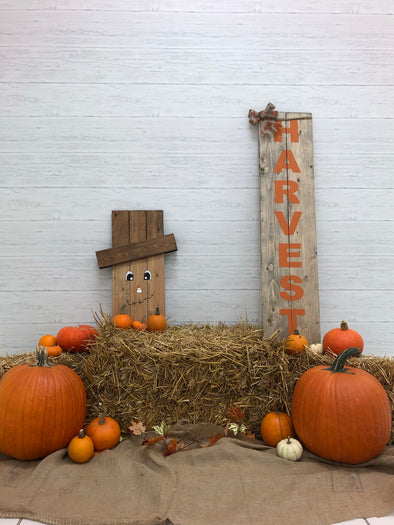 DIY Photobooth- Fall minis