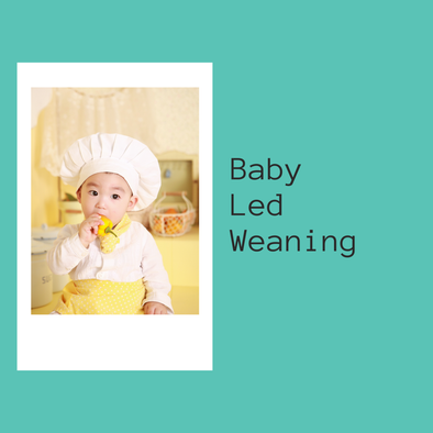 Baby Led Weaning - June 18