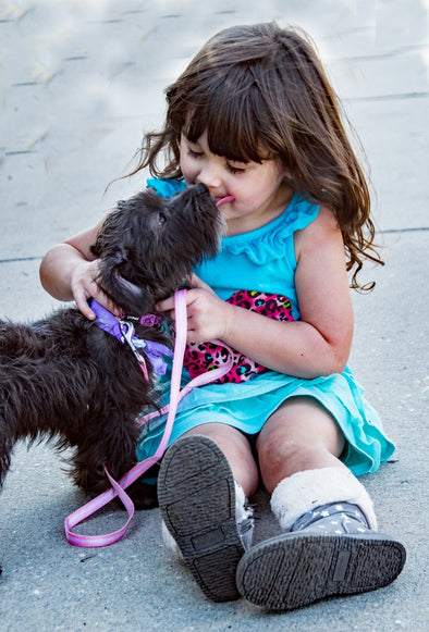 Raising Pet Friendly Kids