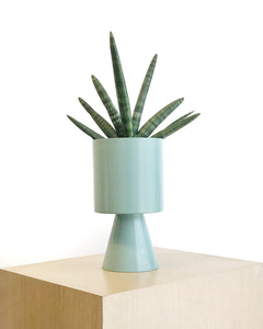 Palm Springs Planter in Green by Lightly