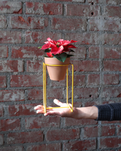 Load image into Gallery viewer, NewMade LA Desk Planter
