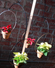 Load image into Gallery viewer, NewMade LA Circle Hanging Planter 10""