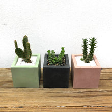 Load image into Gallery viewer, Cube Planters by Poured Forms