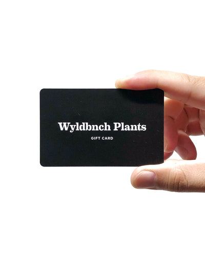 The WYLDBNCH Gift Card
