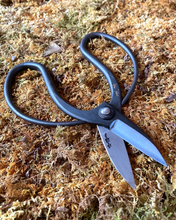 Load image into Gallery viewer, Garden Scissors from RT1Home