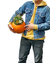 Load image into Gallery viewer, WYLD Workshop: Succulent Pumpkin Arrangement with Nicole Yalung