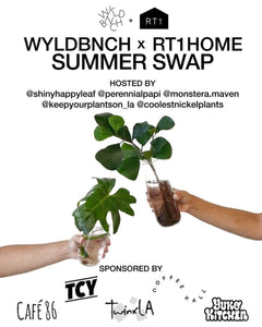WYLDBNCH x RT1home Summer Swap