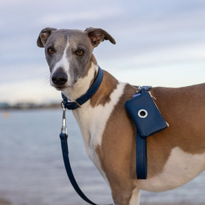Laguna - Eleather Dog Leash