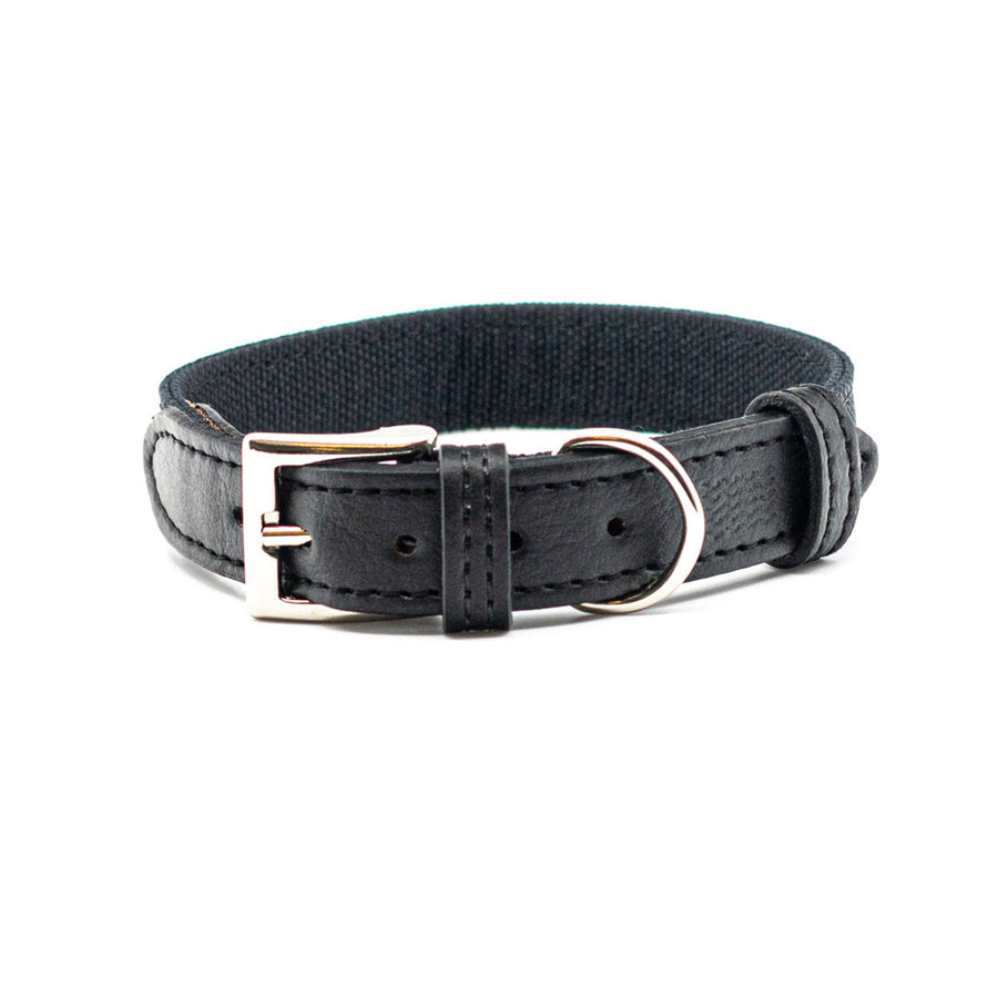 Santorini dog collar
