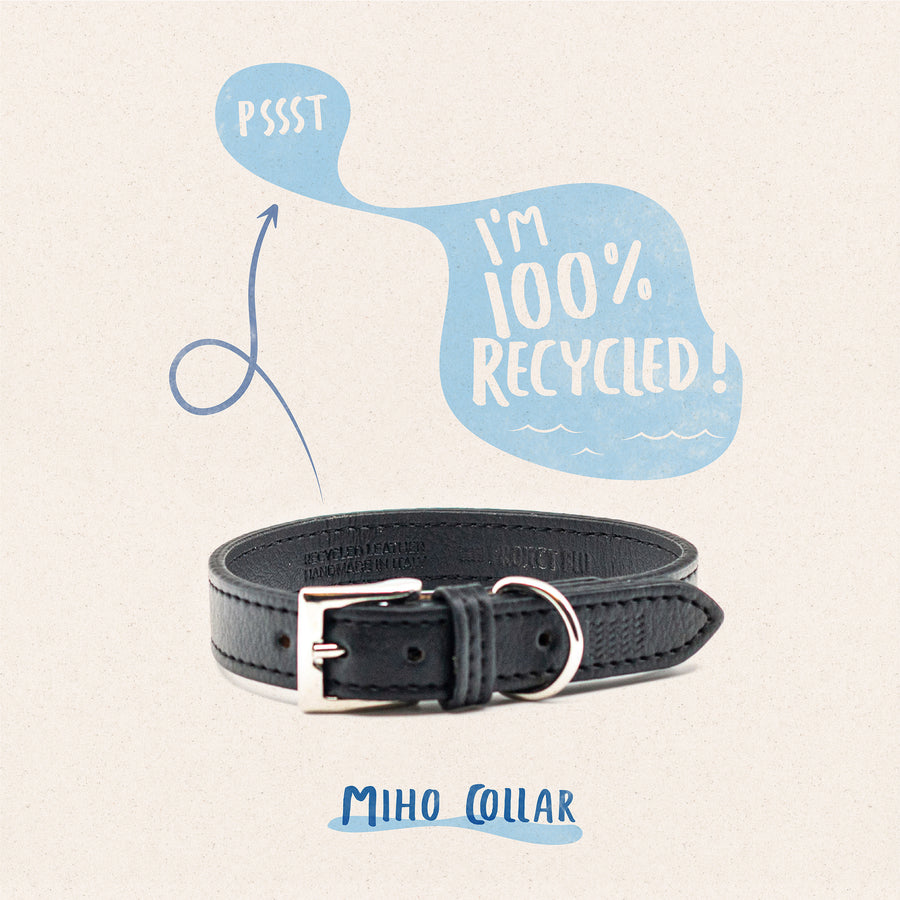 Miho dog collar