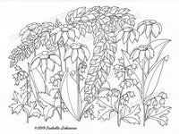Wild flowers coloring page.