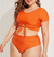Chantel Crop Top High Waist Bathing Suit