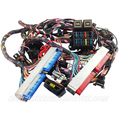 STANDARD LS1 STANDALONE BUILDERS SERIES ENGINE WIRING HARNESS EV1 (DBC) TH400 POWERGLIDE AUTO TRANS