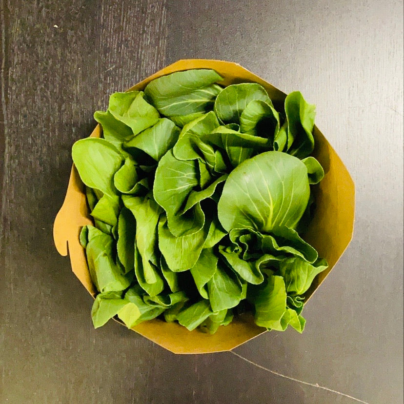 Baby Bok Choy 1lb (Friday Only)