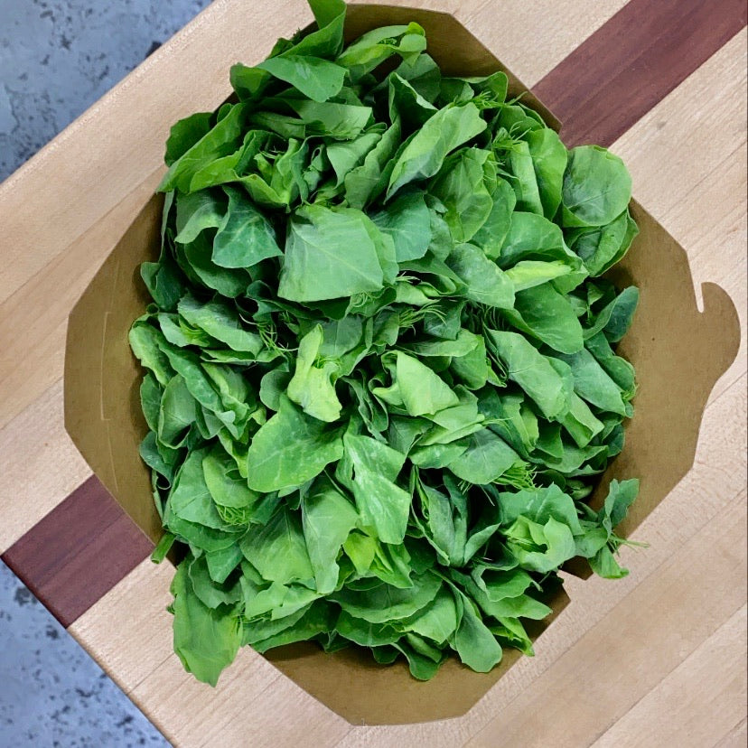 Pea Shoots 1lb (Friday Only)