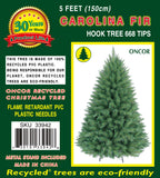 5ft Carolina Fir