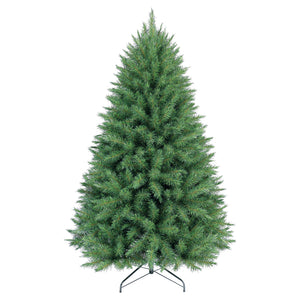 6ft Carolina Fir