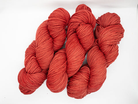 Persimmon on DK Superwash Polworth