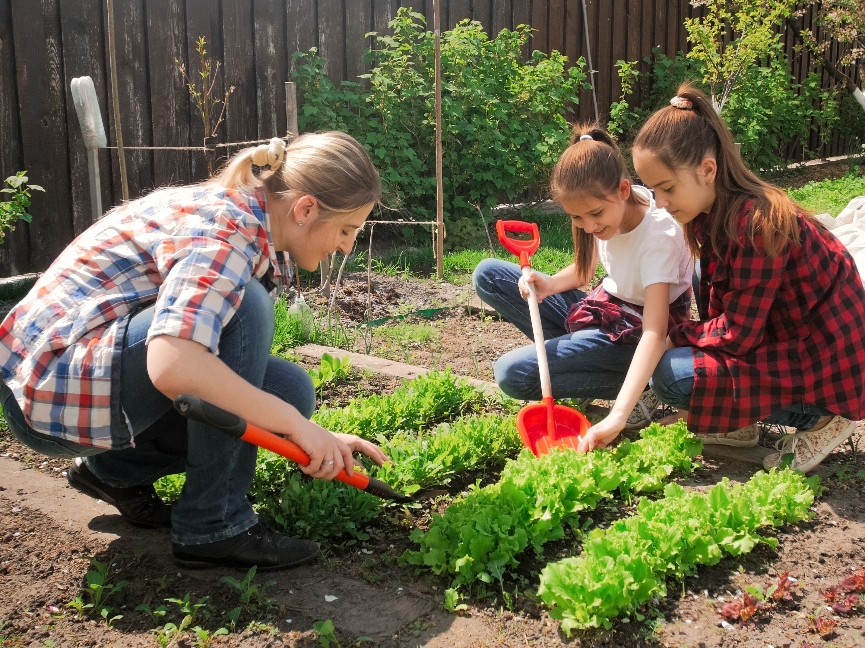 Home Garden How To's