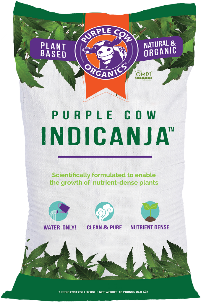 Purple Cow IndiCanja - 1 Cubic Foot Bag