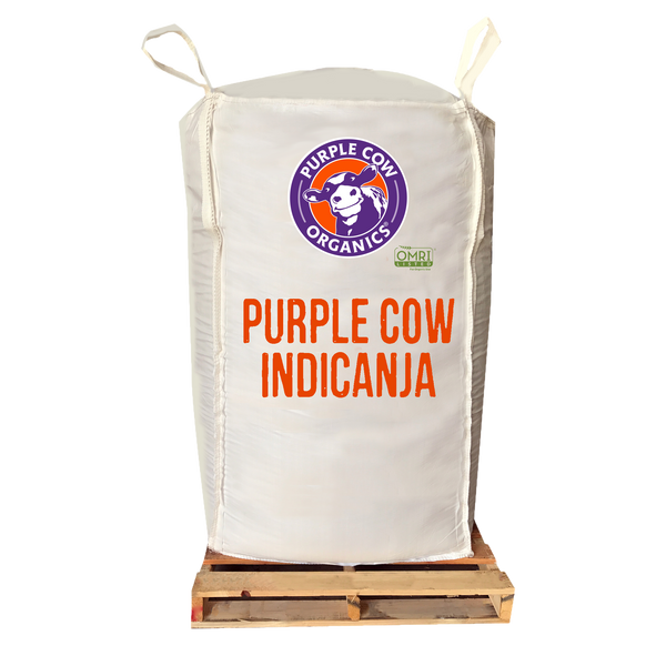 Purple Cow IndiCanja - 2 Cubic Yard Supersack