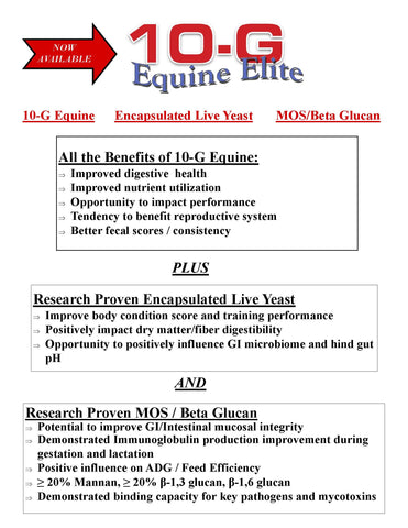 10-G Equine Elite Probiotic 1lb