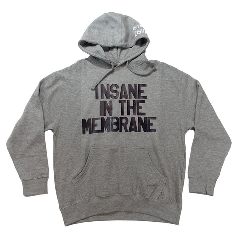 INSANE IN THE BRAIN hoodie