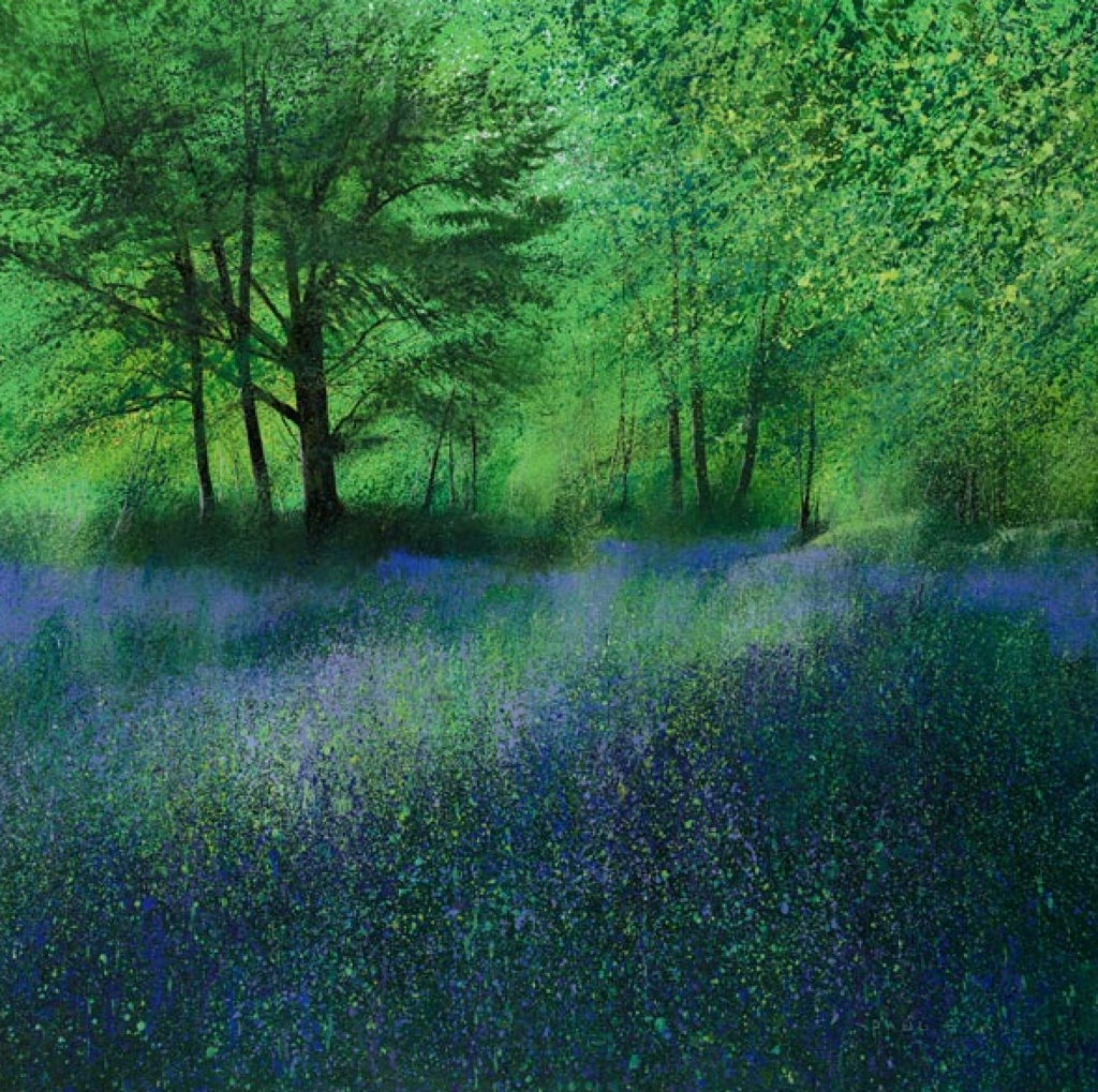 Secret Bluebells