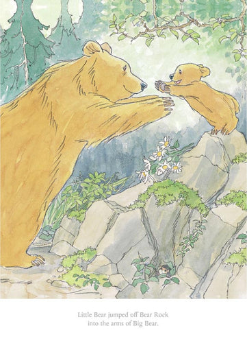 Barbara Firth - Little Bear jumped off Bear Rock
