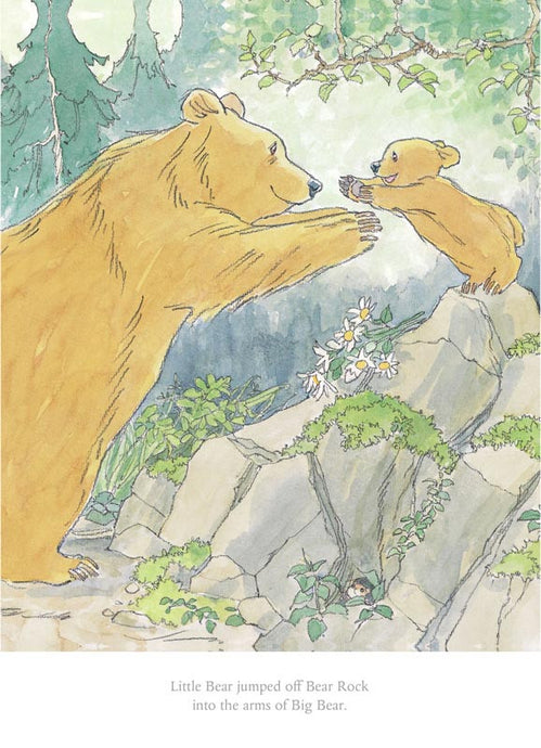 Barbara Frith - Little Bear jumped off Bear Rock