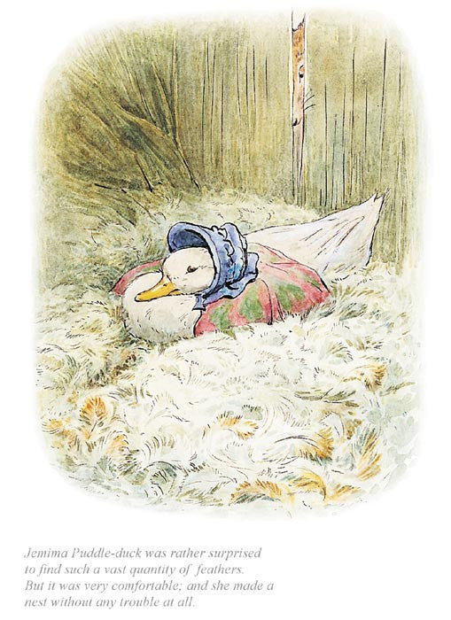 Beatrix Potter - Jemima was surprised to find a quantity of feathers