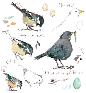 Sketchbook-Blackbird & Coaltit