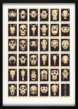 Load image into Gallery viewer, Skulls A to Z
