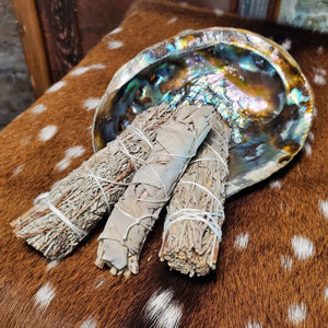 Bundle of 3 White & Blue Sage and Abalone Shell