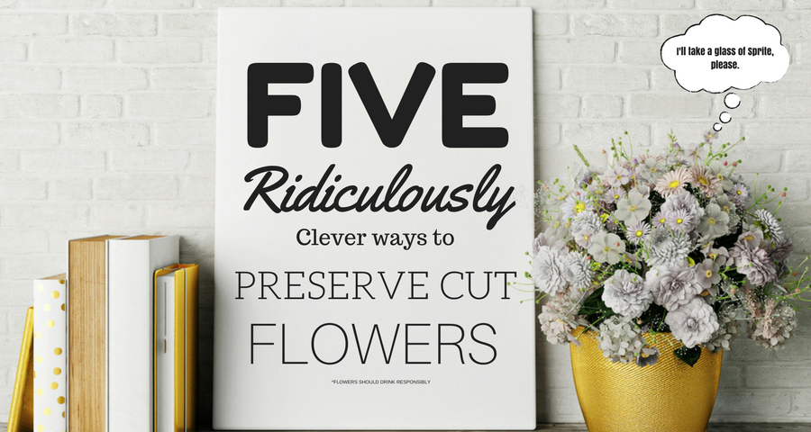 Preserve Cut Flowers