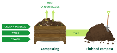 Graphic displaying how composting works