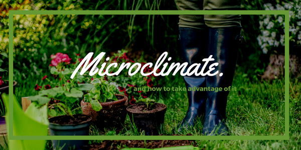 Microclimates, DIY. Creating your ...
