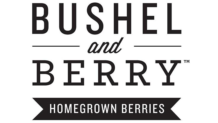 Bushel and Berry® Blueberry Glaze™ Blueberry Bush