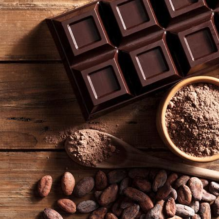 Chocolate Cocoa Plants For Sale Fastgrowingtrees Com