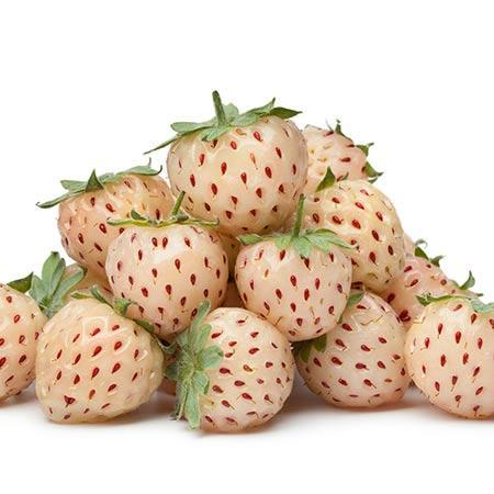 Wonderful™ Pineberry