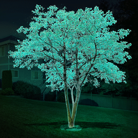 DayGlo (Glow in the Dark) Tree