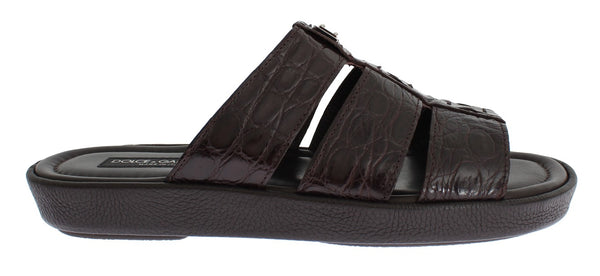 Brown Caiman Crocodile Leather Sandal Shoes